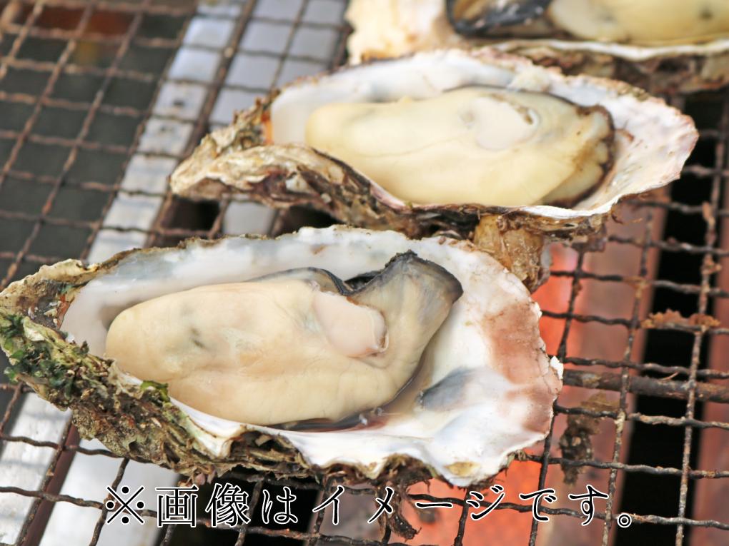 満月水揚げの広島産殻付き牡蠣